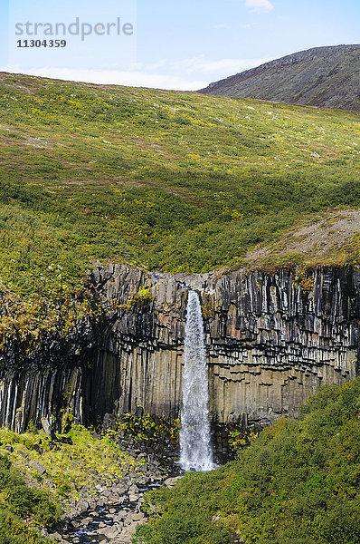 Basalt,Basaltsäule,Europa,Gewässer,Hochformat,Island