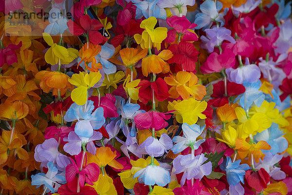 Amerika,Big Island,Blume,Blumenschmuck,Botanik,colorfoul