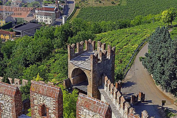 Architektur,Bauwerk,Burgen,Bäume,Castello Medievale,Detail