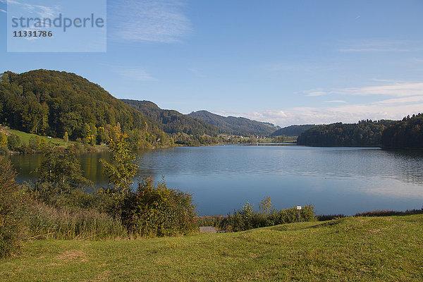 Europa,Gewässer,Herbst,Jahreszeit,Kanton Zürich,Landschaft