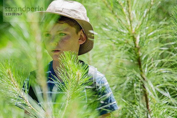 Junge erkundet im Wald