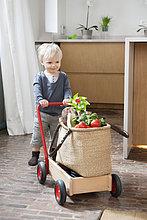 Ein Junge schiebt einen Wagen mit einem Gemüsebeutel darauf.